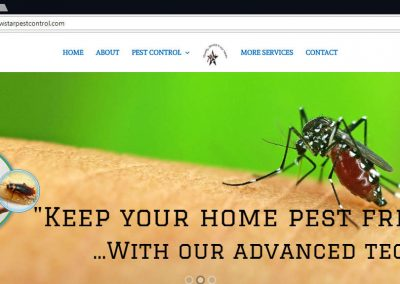New Star Pest Control